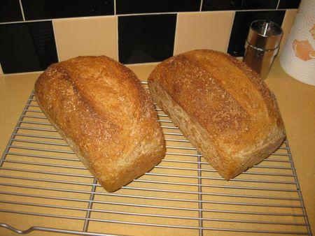Jeff's Almost No Knead Sandwich Bread