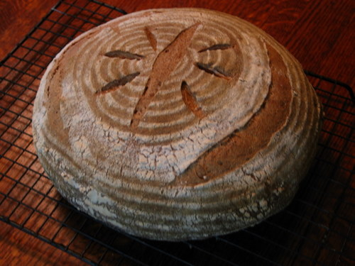 Jacquie's whole grain sourdough