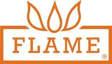 Emile Flame Logo