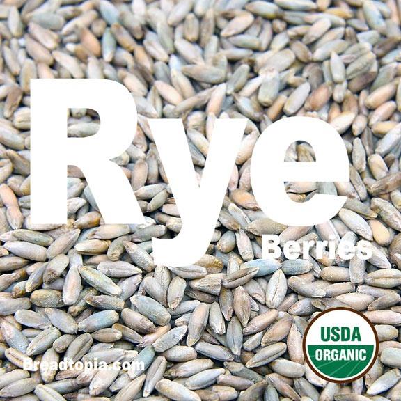 Organic Rye Berries