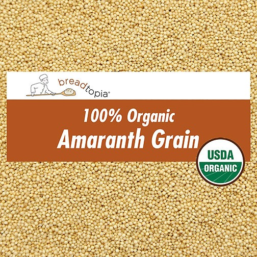 Where can i buy amaranth grain