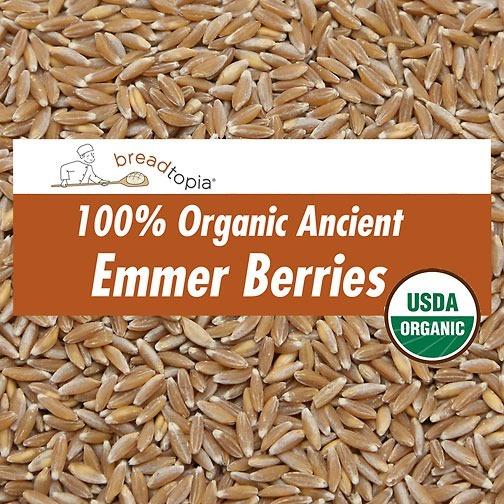Organic Emmer Wheat Berries Breadtopia