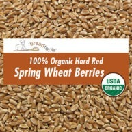 grain-organic-hard-red-wheat-berries-sq