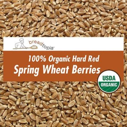 grain-organic-hard-red-wheat-berries-sq