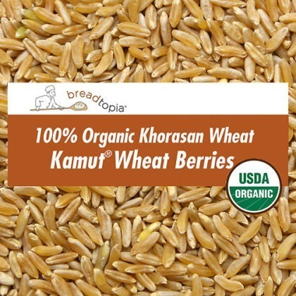 grain-organic-kamut-wheat-berries-sq