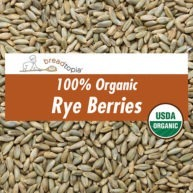 grain-organic-rye-berries-sq