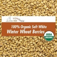grain-organic-soft-white-wheat-berries-sq