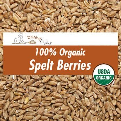 grain-organic-spelt-berries-sq