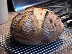 Bread Dome Bread