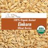grain-organic-einkorn-wheat-berries-sq