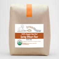 flour-organic-hard-red-spring-wheat-sq