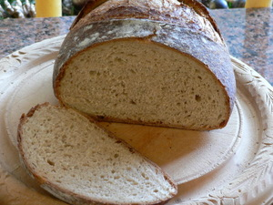 Cook's Illustrated Almost No Knead Bread
